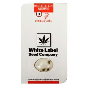 marihuana WHITE DIESEL HAZE Automatic - tri  konopné semená od White Label Seed