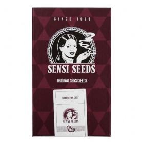 semená marihuany HIMALAYAN CBD feminizovanej (3 semienka) z holandskej semennej banky Sensi Seeds