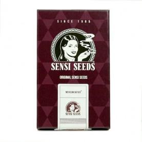 tri semená feminizovaného konope Mexican Sativa