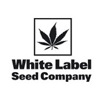 White Label Seed Company (Sensi Seeds)